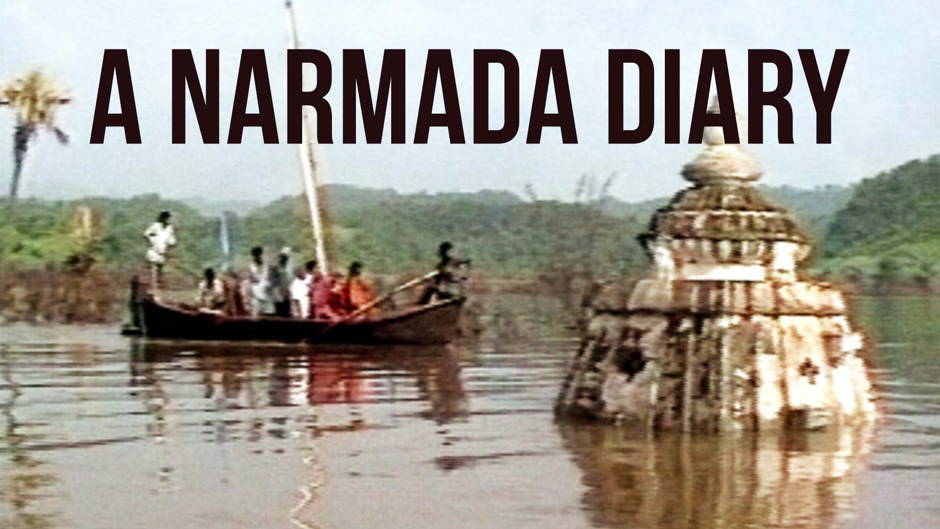 A Narmada Diary - image