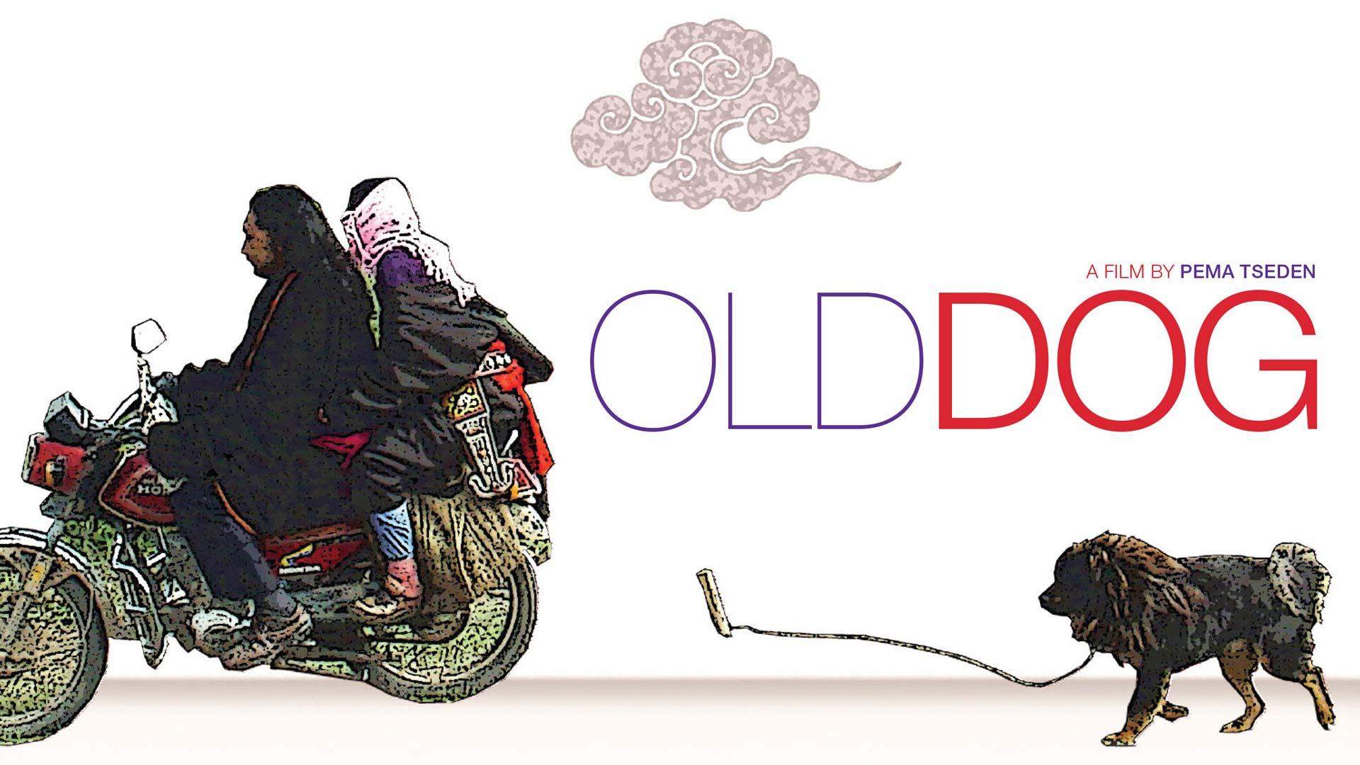 Old Dog - image
