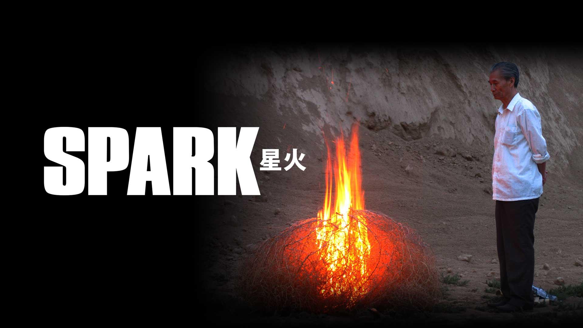 Spark - image