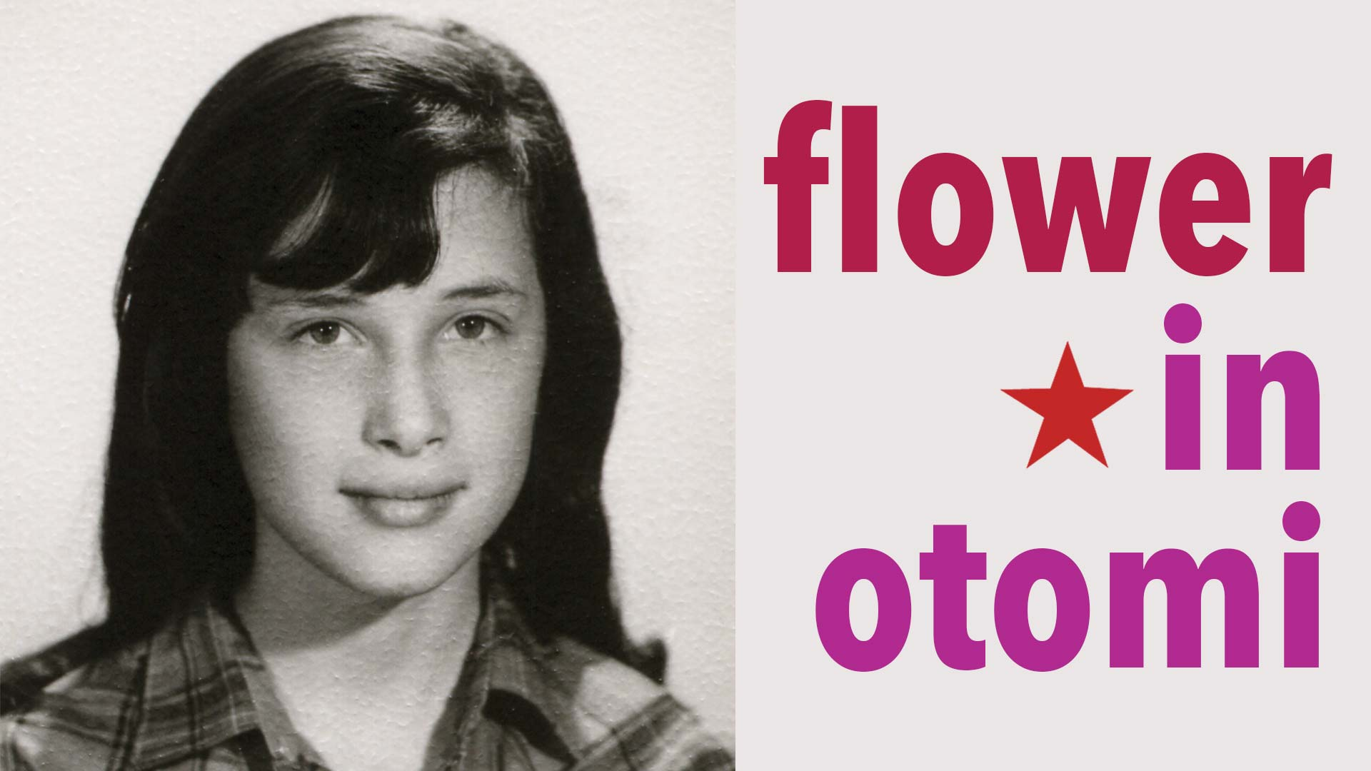 Flower in Otomi - image