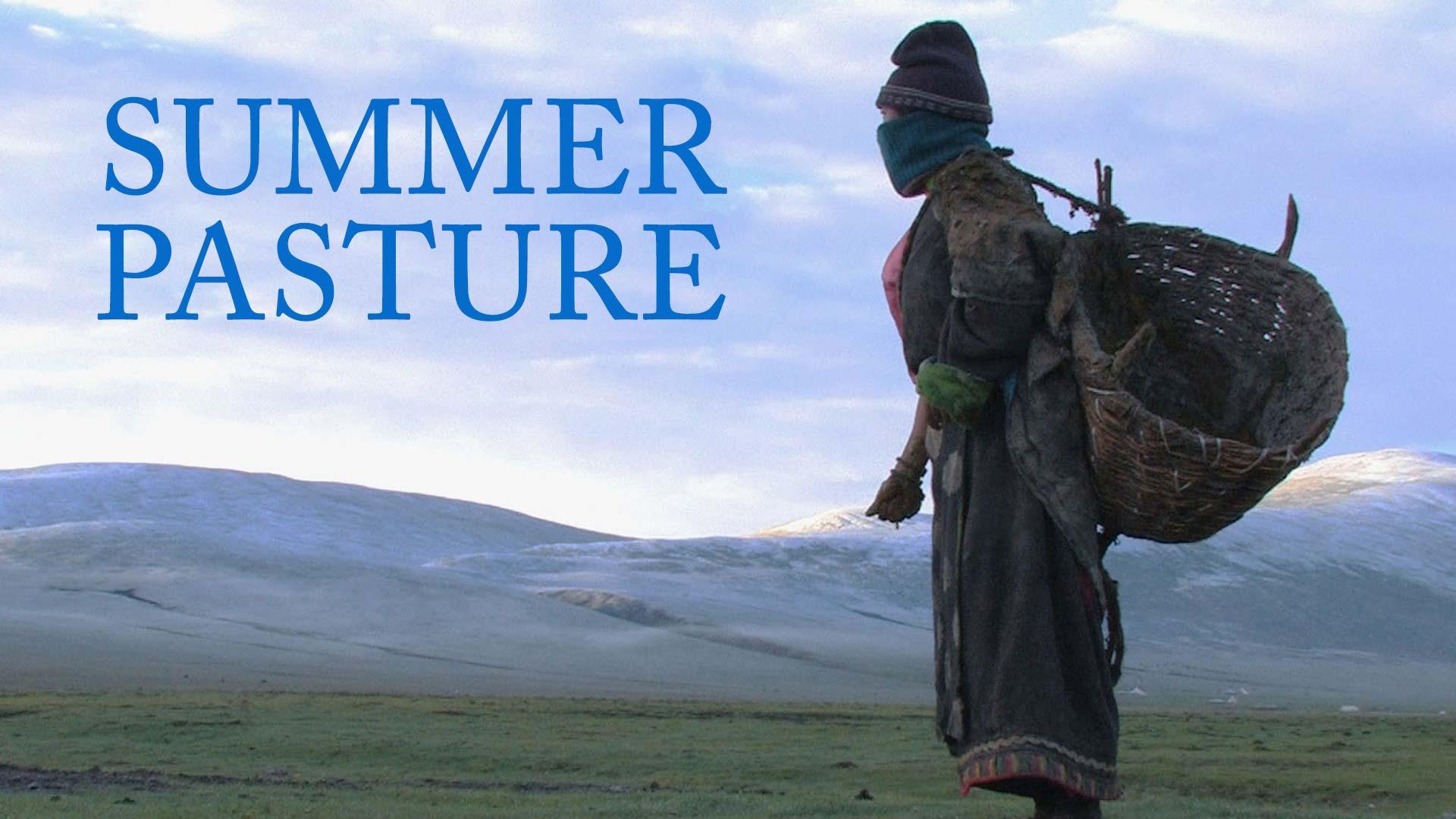 Summer Pasture - image